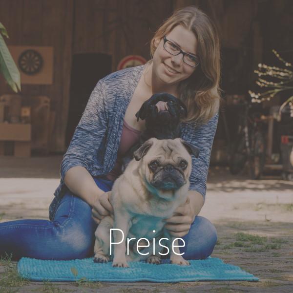 Hundephysiotherapie Stuttgart