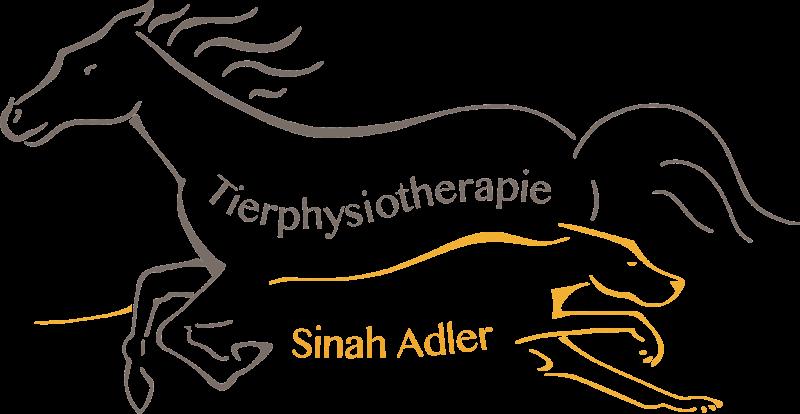 Hundephysiotherapie Freiburg