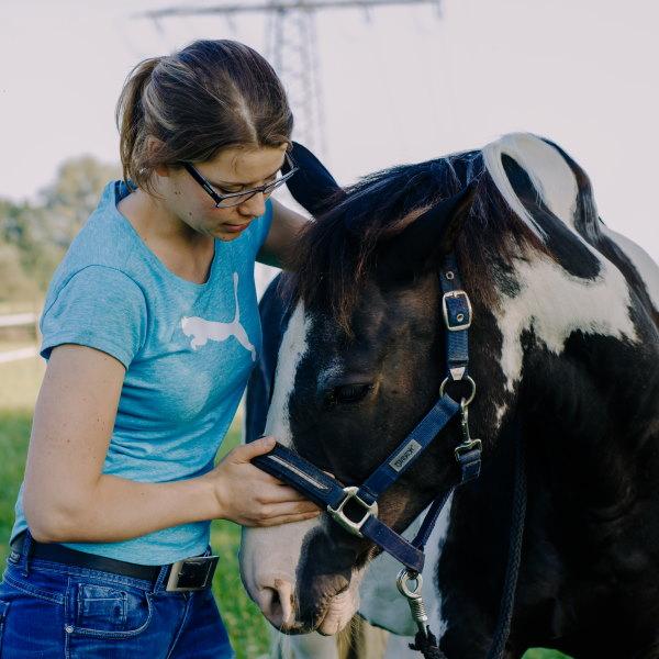 Pferdephysiotherapie Emmendingen